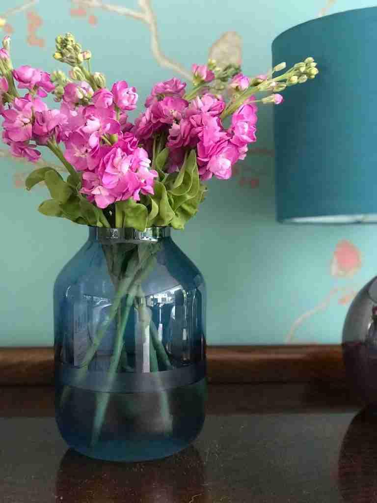 Roomy Home Hema shop edit blue vase with stocks